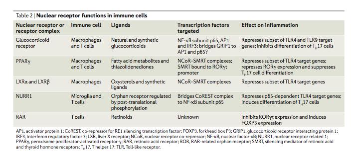 Innate immune response summary essay